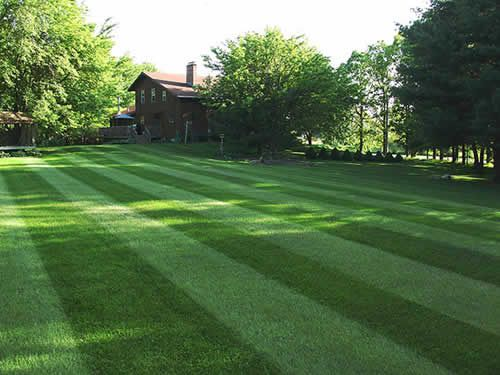 proper landscaping